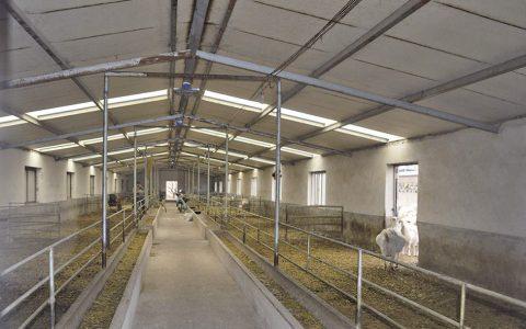 羊场建设羊舍设计与建设