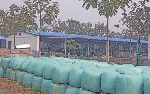 青贮袋-羊场配套设施与设备