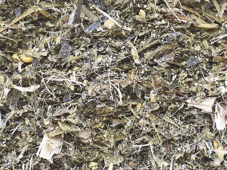 影响青贮饲料品质的因素有哪些与品质鉴定- 养羊饲料加工技术
