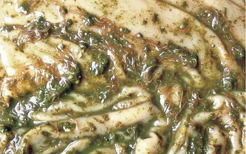 羊胃肠道线虫的那些症状与治疗方法特征用药-羊病诊断