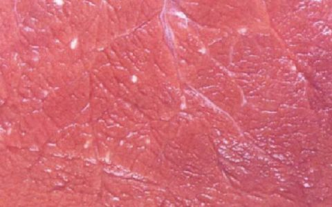 羊住肉孢子虫病(无力,肌肉僵硬,食欲不振,发热)症状原因及诊断治疗方法