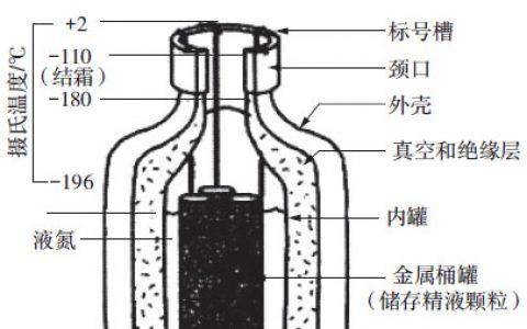 冷冻精液的保存和运输-羊的繁殖新技术